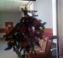 Magia Świąt Bożego Narodzenia w Internacie