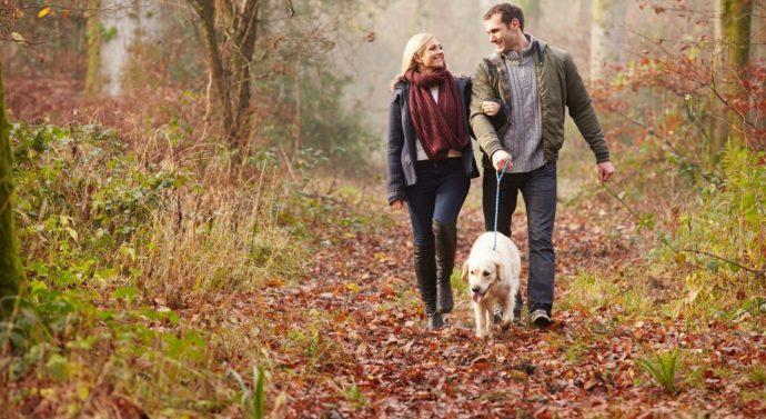 Jak właściwie zająć się psem podczas odbywania kwarantanny?